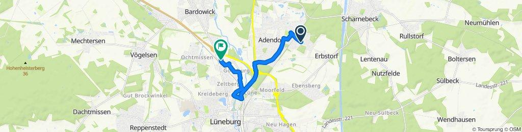 Langsame Fahrt in Lüneburg