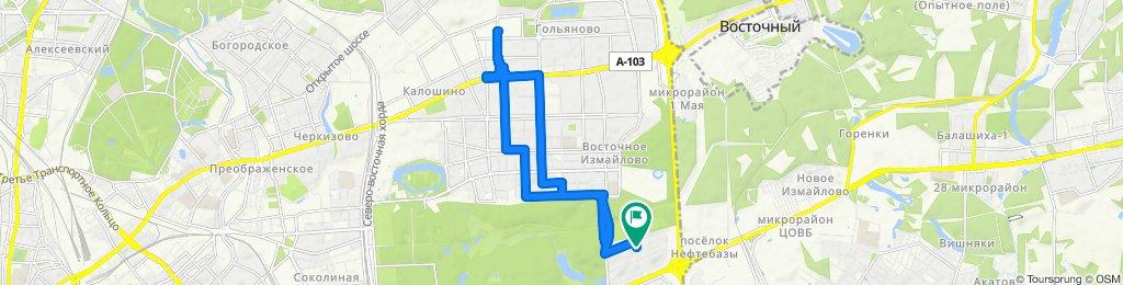 Велозабор из Гольяново  16 01 2020