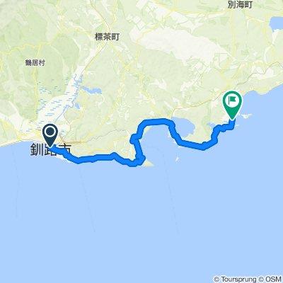 釧路-厚岸-霧多布岬(北太平洋線)