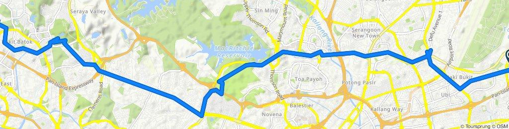 Bedok Reservoir Road to Bukit Batok勿洛蓄水池路至武吉巴督