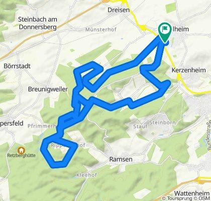 Göllheimer Winter-CTF (kleine Runde 35 km)