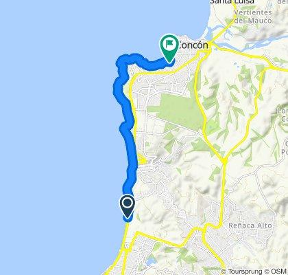 Ruta constante en Viña del Mar