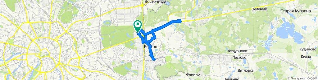 Зимние оттепельные велоездки - Балашиха и двойной Реутов 29 01 2020