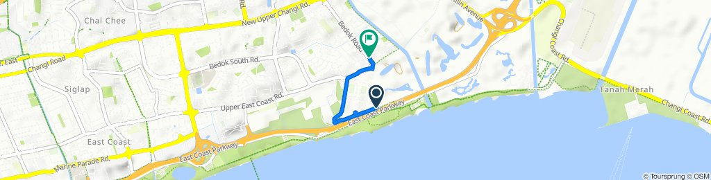 Relaxed route in Bedok