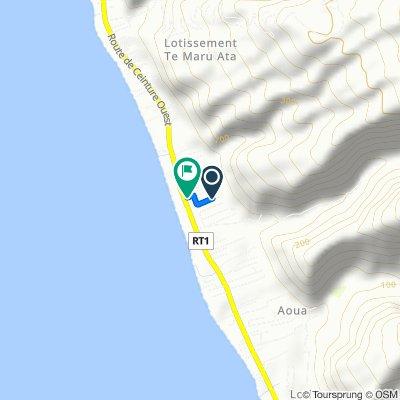 Route stable en Puna'auia