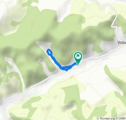 Moderate route in zapodea parului