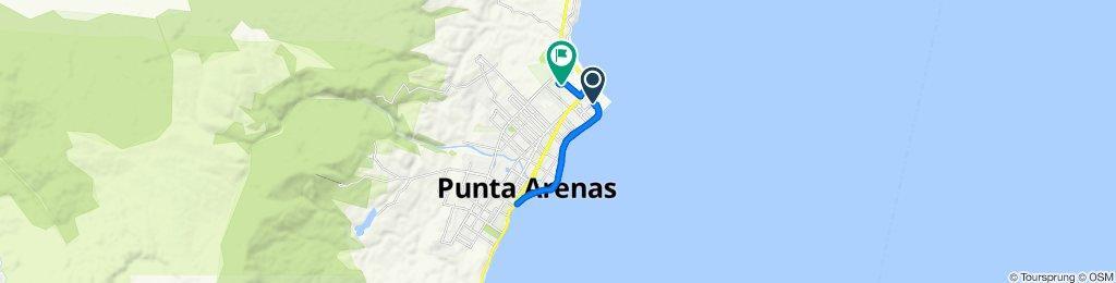 Ruta tranquila en Punta Arenas