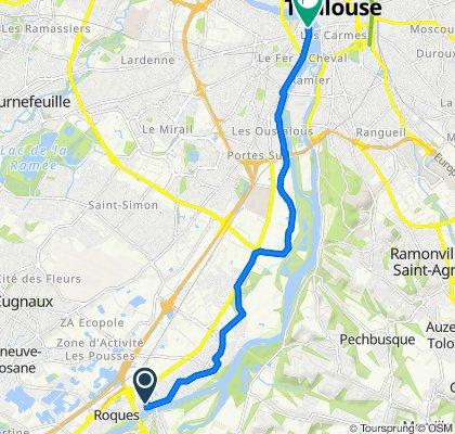 1ter Chemin du Castelet, Roques to 6 Rue Viguerie, Toulouse