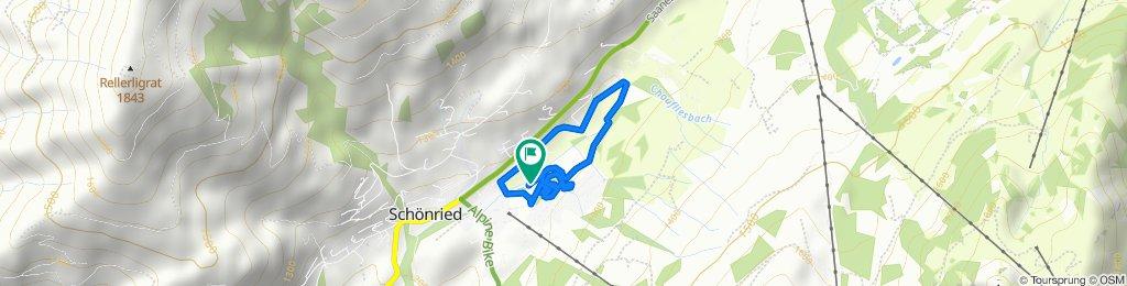 Strecke Distanzrennen LL-XCX Raiffeisen-Trophi 9.02.2020