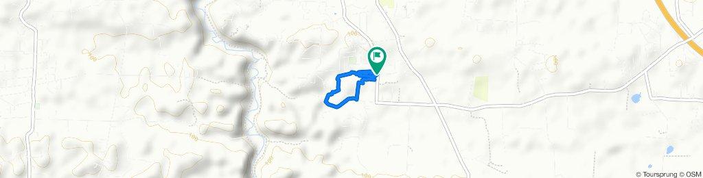 Capaez MTB Trail. Carr 130 interior Bo Capaez, Hatillo.
