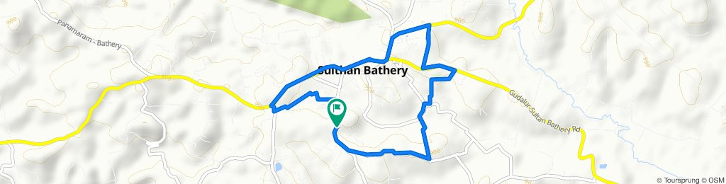 Steady ride in Sultan Bathery