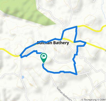 Steady ride in Sultan Bathery