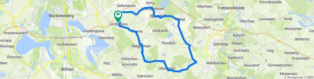 ACL RTF 40 km