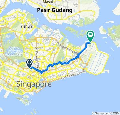 4 Jalan Raja Udang, Whampoa to 2 Changi Village Road, Changi