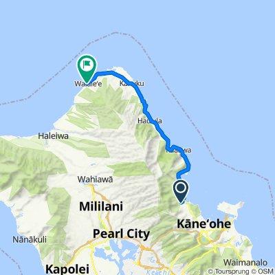 Oahu 4