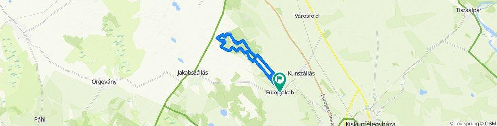 Tour de Puszta 2020 - rövid táv
