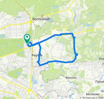 Балашихинские зимние оттепельные сильноветровые велоездки Балашиха - Кучино - Реутов 17 02 2020