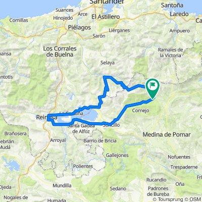 Espinosa de los Monteros 3