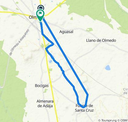 Ruta moderada en Olmedo