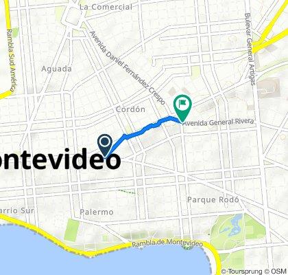 Caminhada lenta Montevidéu