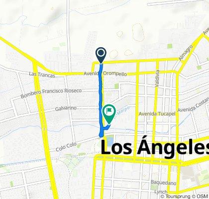 Av. Los Ángeles