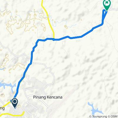 Steady ride in Toapaya