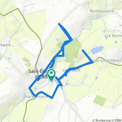 Route stable en Saint-Étienne-du-Bois
