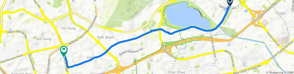 Tampines Park Connector, Tampines to 17B Circuit Road, Macpherson