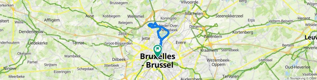 Le Bruxelles de Léopold II et de l'Expo58