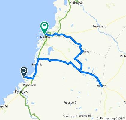 Training 95 km H1 - Vih - Raa