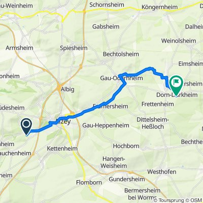 Alzey - Weingut Listmann, 22 km, 140 hm