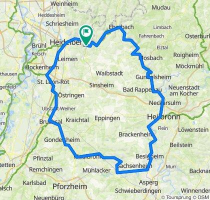Neckartour