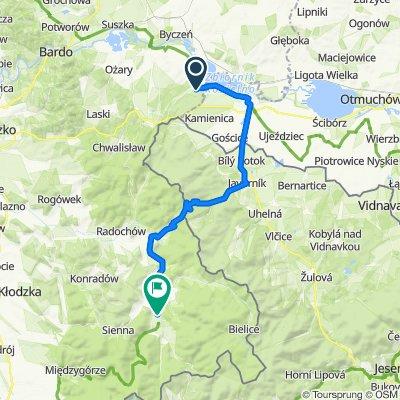 d2_asfalt-40km_Paczkow-Javornik-Stronie