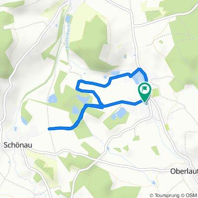 Trieber Straße 6, Falkenstein/Vogtland to Schönauer Weg 1, Falkenstein/Vogtland