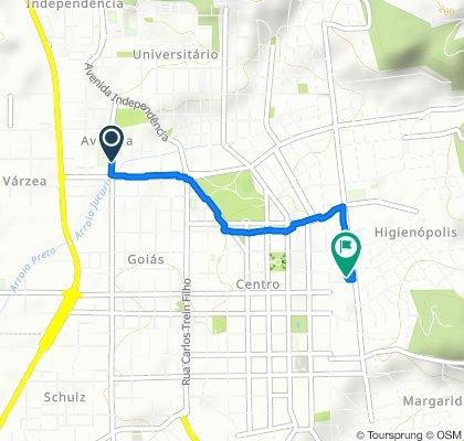 Rua São José, 468, Santa Cruz do Sul to Travessa Haun, 124, Santa Cruz do Sul