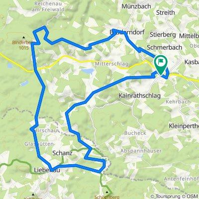 Freiwald-Strecke MTB