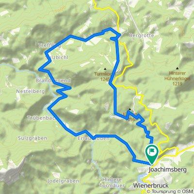 Mountainbiken am Ötscher MTB