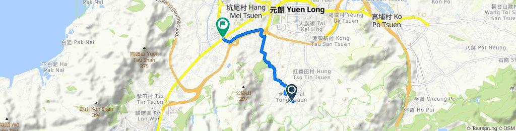 大棠山道至洪水橋青山公路600(慎入有村霸和惡犬)