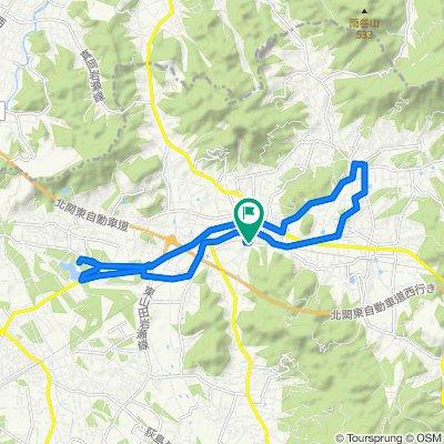 山桜と石の街散策コース