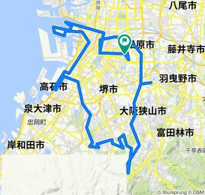 ツール・ド・堺 100kmコース