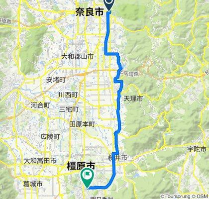 上ツ道ルート(C1)
