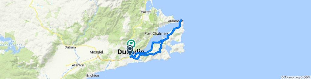 297 Vogel Street, Dunedin to Dunbar Street, Dunedin