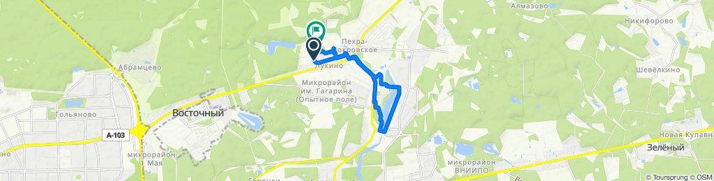 Route from улица Дмитриева, 8, Балашиха