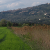 Ossaia-Cortona-Monastero Le Celle