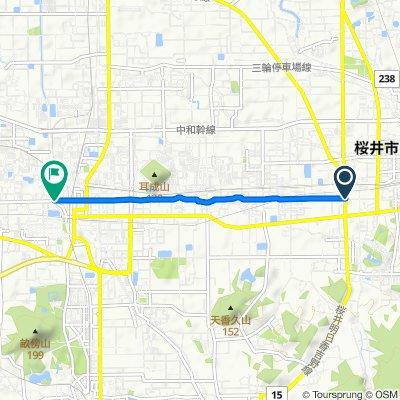 横大路ルート(C14)