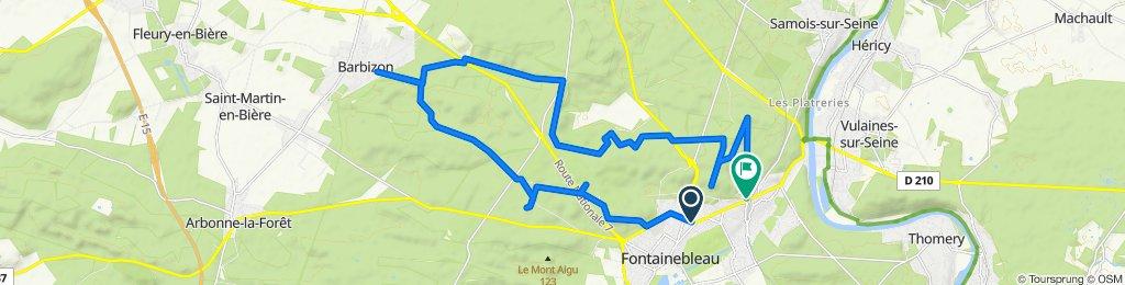 Tour découverte de la forêt de Fontainebleau