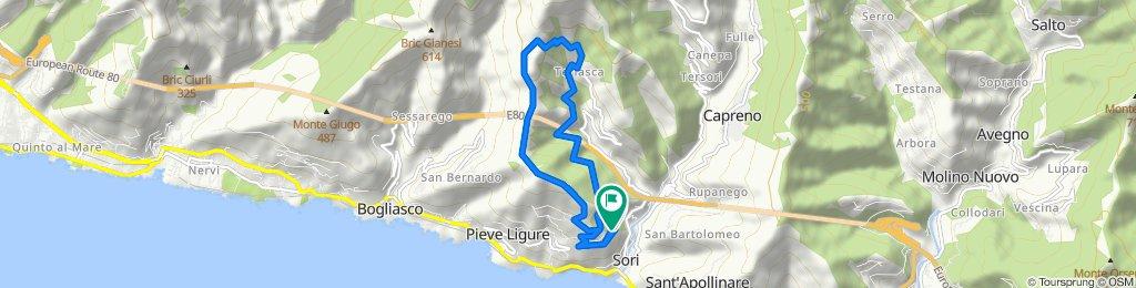 Pieve Alta - Santa Croce - Traliccio - Cian de Cola - Teriasca - Pieve Alta