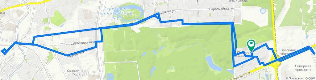 Весенние увлажненные велоездки Реутов - Басманный - Южное Измайлово 10 марта 2020