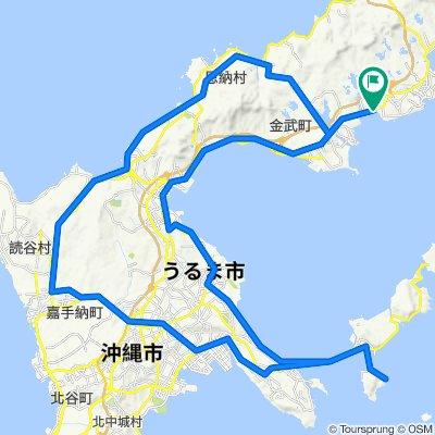 中部周遊コース