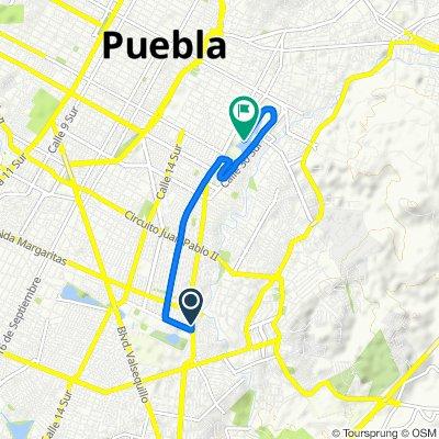 Avenida Río Papagayo 6147, Puebla to Avenida 24 S 1304, Puebla